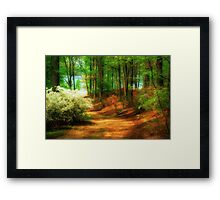 Favorite Path Framed Print