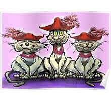 Cats in Red Hats Poster