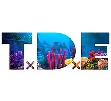TDE Coral Reef Waters by Telic
