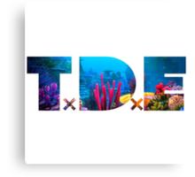 TDE Coral Reef Waters Canvas Print