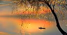 Fishing Sunset by Igor Zenin