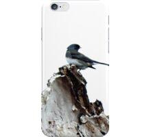 One Little Bird iPhone Case/Skin