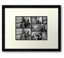 Bears, Bears, Bears Framed Print