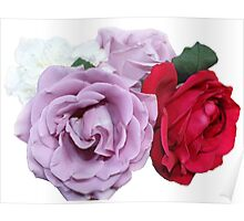 Bouquet of Garden Roses Poster