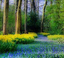Happy Spring by Jo Nijenhuis