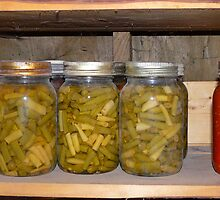 Quarts of  Green and yellow Beans and Tomatoes by MaeBelle