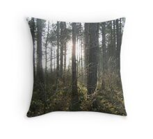 Narnia! Throw Pillow