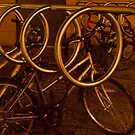 Dundee Bike Rack by Susan A Wilson