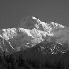 Denali  - Mt McKinley by Barbara Burkhardt