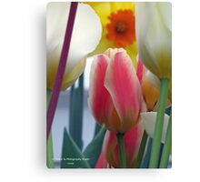 Surrounded by Giants Canvas Print