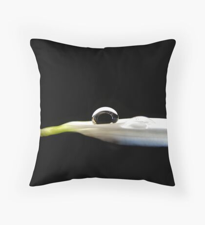 Glass Throw Pillow