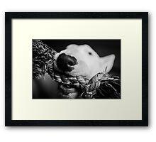 Ernest Framed Print