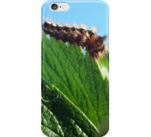 Caterpillar on the strawberry leaf iPhone Case/Skin