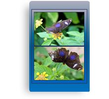 Small Blue Grecian Butterfly collage Canvas Print