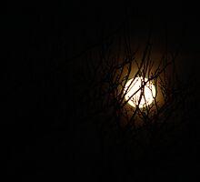 March Moon......... by DoreenPhillips
