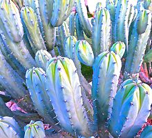 """Spring Cactus Choir"" by AlexandraZloto"