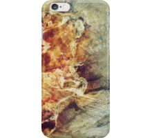 280 Shell iPhone Case/Skin