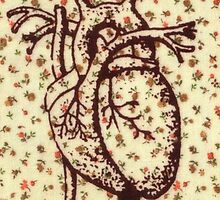 Anatomical heart on vintage floral background by joellis