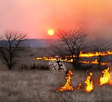 Kansas Rancher Checks Fire Line by Catherine Sherman