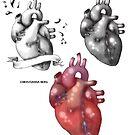 human heart by Xtianna