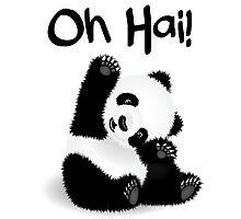 Baby Panda - Oh Hai! Photographic Print