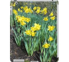 Bed of Daffodils iPad Case/Skin