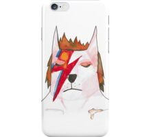 Ground control to Major Tom the cat  iPhone Case/Skin