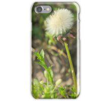 Dandelions last stand iPhone Case/Skin