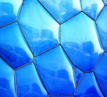 Blue Reflections  by Ethna Gillespie