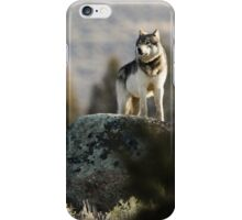 The Sentinel #1 iPhone Case/Skin
