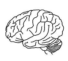 Brain Photographic Print