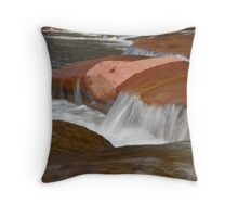 Inviting water Throw Pillow