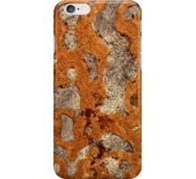 Dinosaur bone under the microscope iPhone Case/Skin