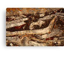 Jurassic under the microscope Canvas Print