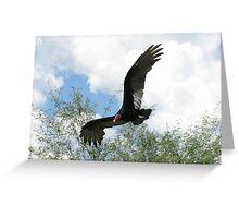 Turkey Vulture ~ Death's Angel Greeting Card