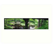 Quiet Swamp Pond in Gatineau Park Art Print