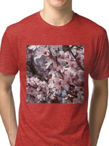 Cheery Cherry Blossoms Tri-blend T-Shirt