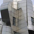 Gehry Art Museum Detail by Jennifer Ferry
