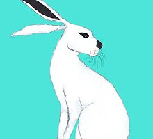 WHITE HARE by Hares & Critters