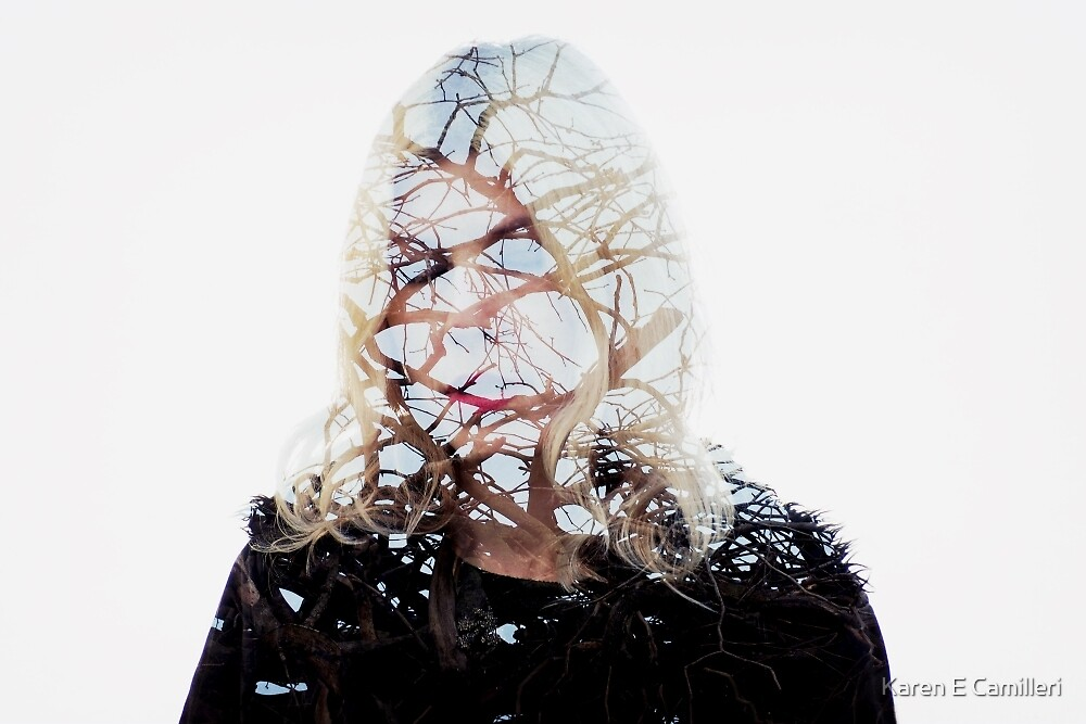 Winter's Temptress by Karen E Camilleri