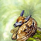 Fawn in the Fern by Patricia Howitt