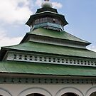 Mosque, Lake Maninjau by Naomi Brooks