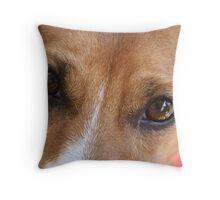 Bruce the Almighty Throw Pillow