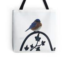 Eastern Bluebird of New England Tote Bag
