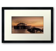 Starlings above West Pier Framed Print