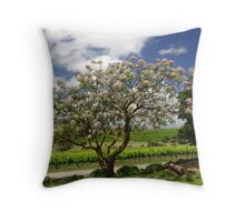Coriole Winery, McLaren Vale, South Australia Throw Pillow