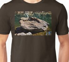 The Stone of Carter's Lake Unisex T-Shirt
