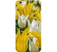 Rays of Spring Tulips iPhone Case/Skin