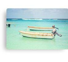 Caribbean Sea Metal Print