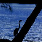 Egret by Elaine Teague
